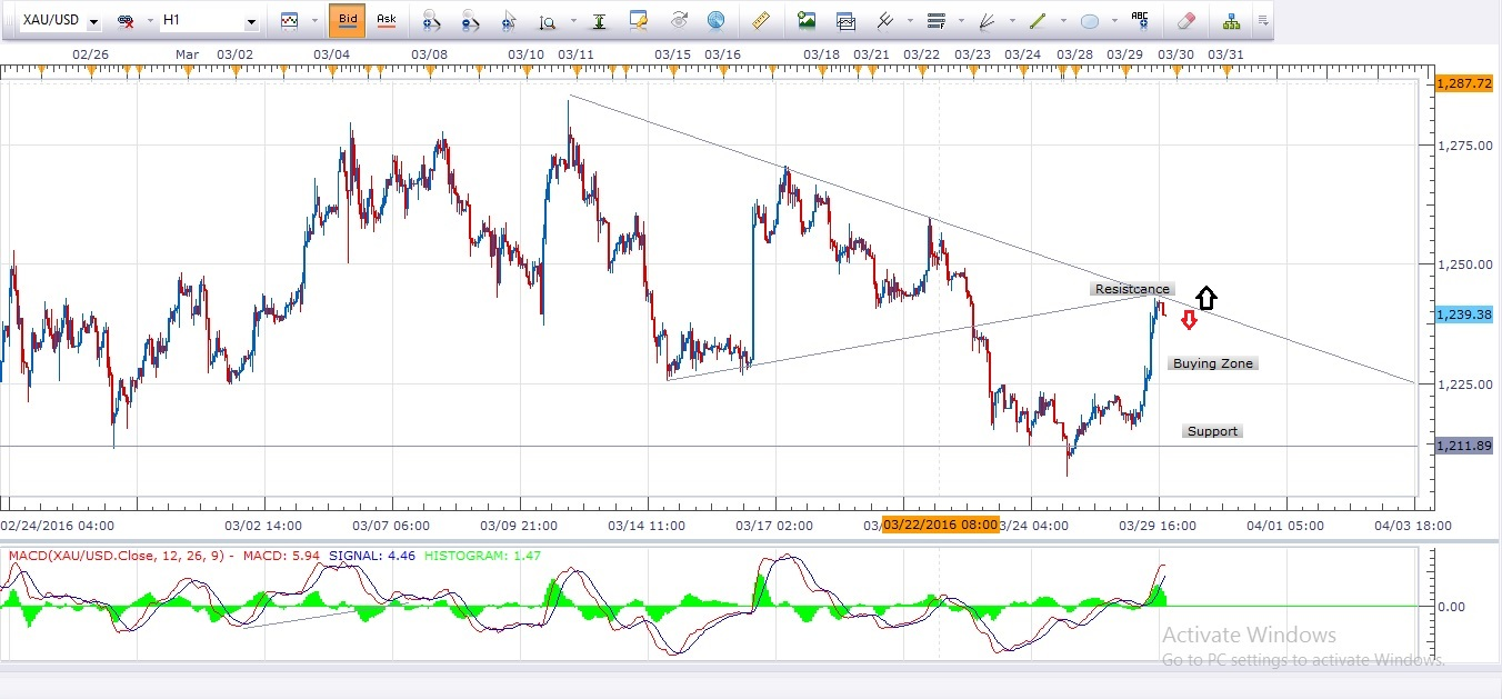 Daily Gold Analysis 30th March 2016 ( Analysis Update )
