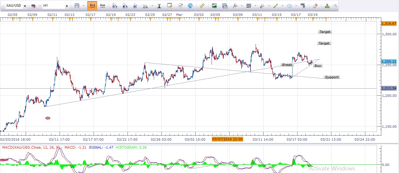 1 Hour Chart Gold