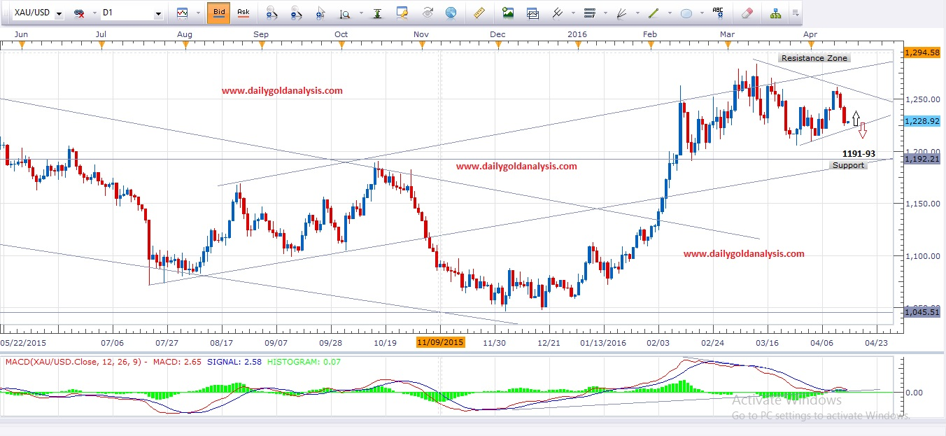 Daily Gold Analysis Chart