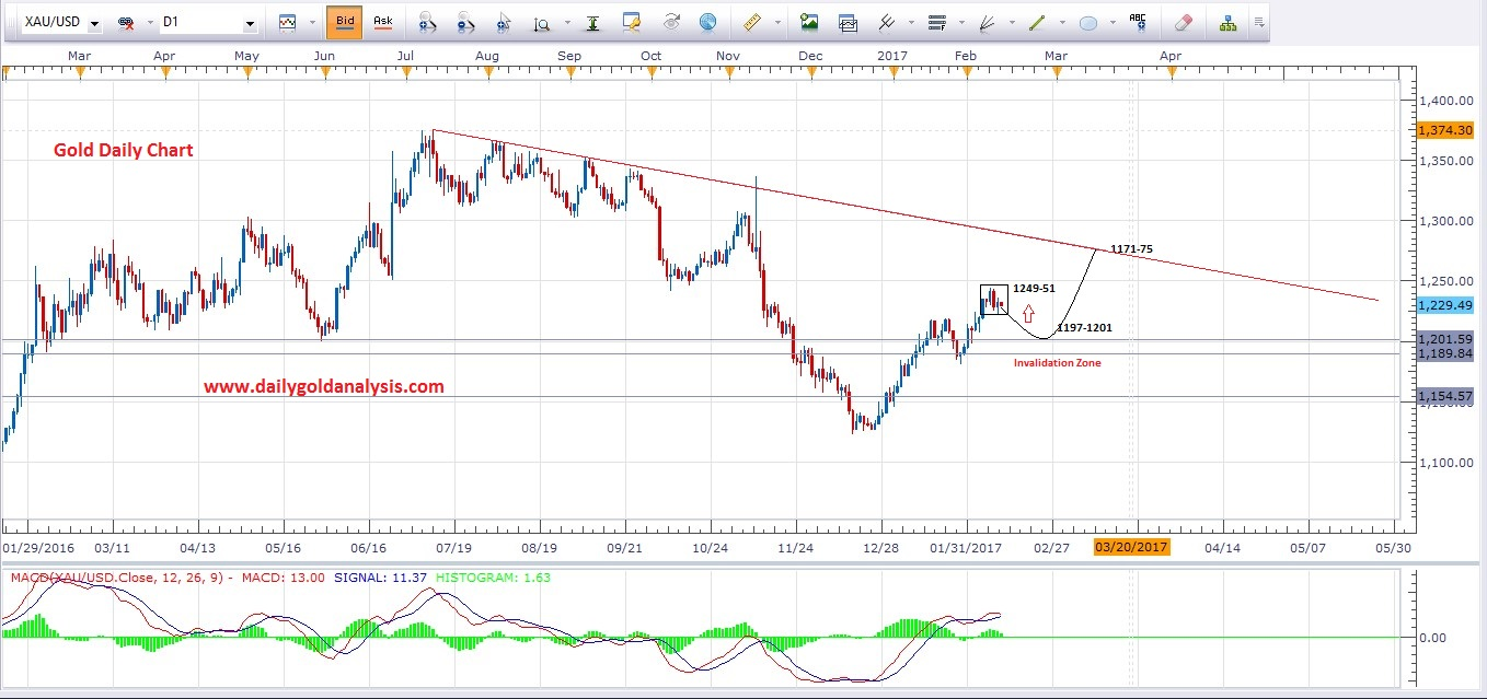 13th Feb Daily Gold Chart